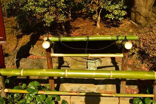 小石川後楽園 048