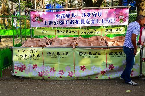 上野の桜0009