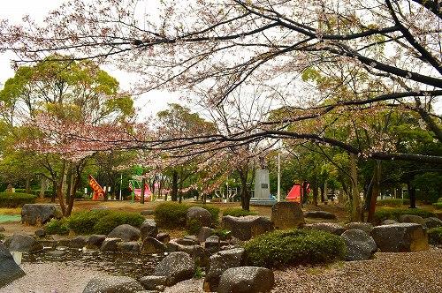 桜吹雪004