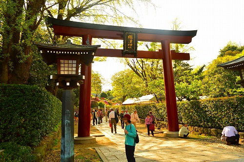根津神社2015 004