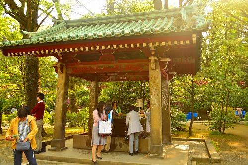 根津神社DSC_0059