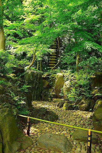 古河庭園0050
