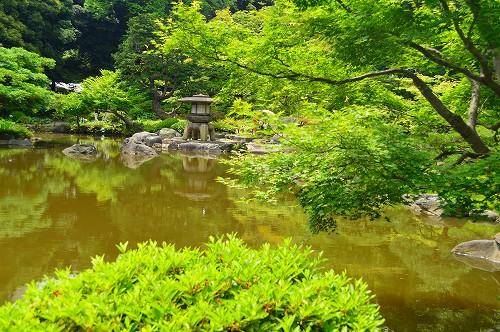 古河庭園_0048