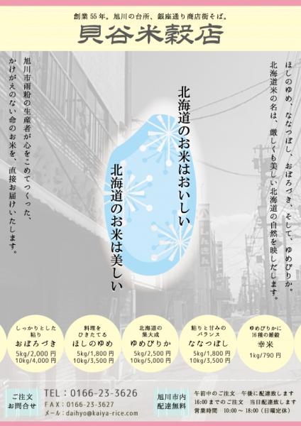 チラシ(市内用)