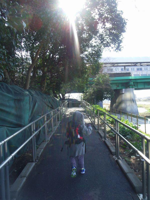 hikari_201502280056594e0.jpg