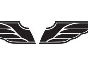 T-shirt Wing Mark (EMBLEM)