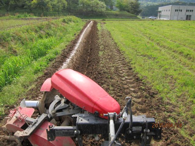 再度塗り直した畦