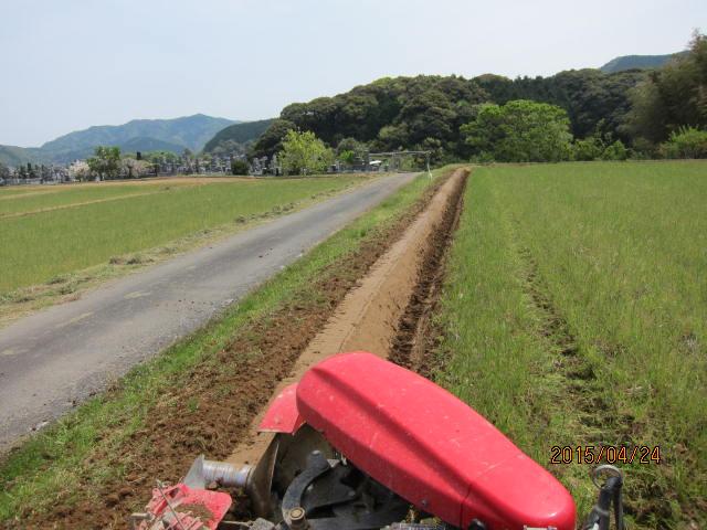 水分の多い圃場