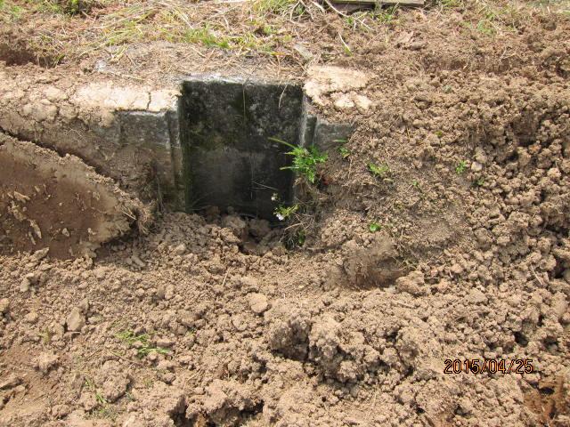 排水口の泥
