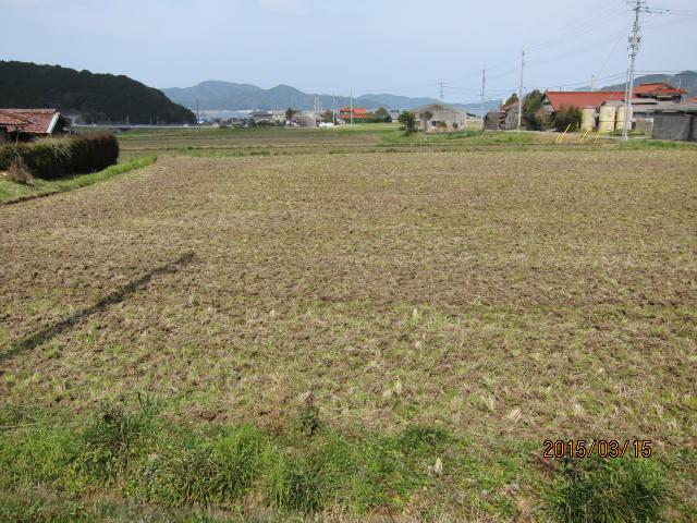 堆肥を埋めた圃場