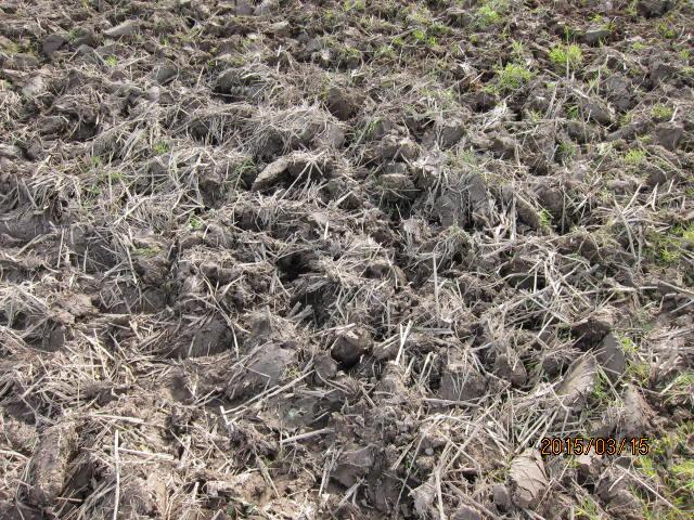 粗く耕した土