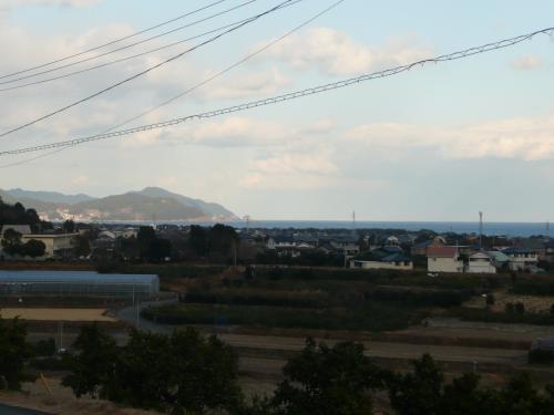 みかん畑と熊野灘