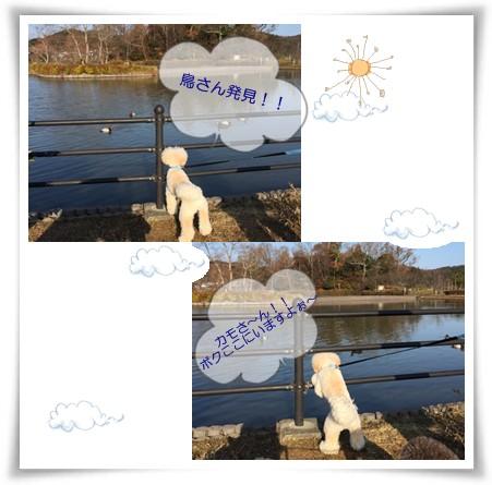 2014-12-21-3.jpg