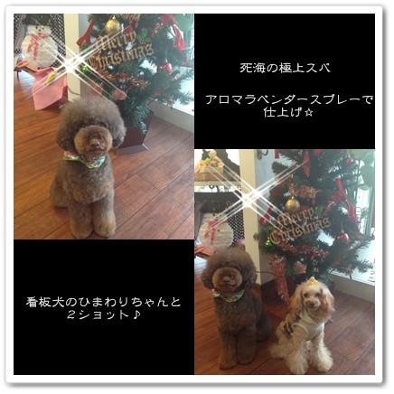 2014-12-25-3.jpg