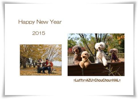 2015-1-1-1.jpg