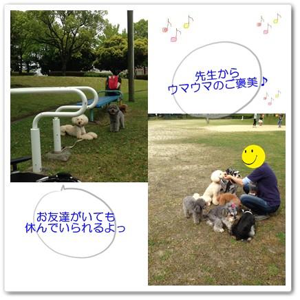 2015-5-23-2.jpg