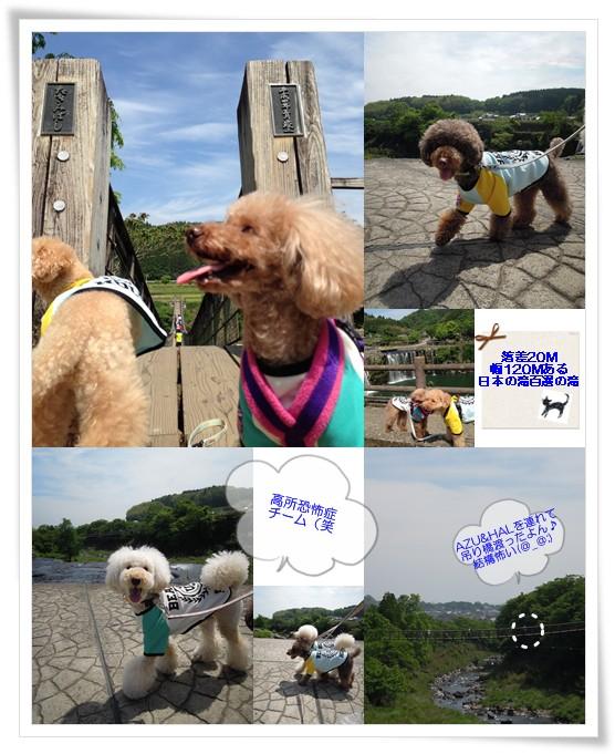 2015-5-6-6.jpg
