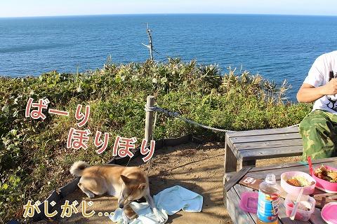 s-nakayoshi141220-IMG_4807