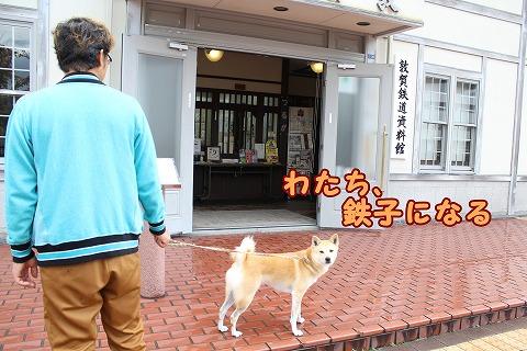 s-nagisa150131-IMG_4871