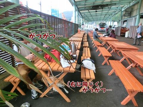 s-nagisa150201-CIMG4296