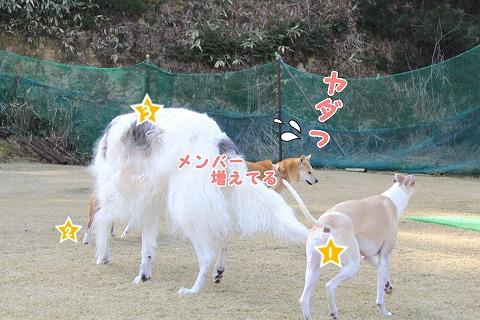 s-nakayoku150301-IMG_5789