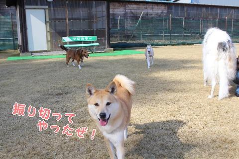 s-nakayoku150301-IMG_5819