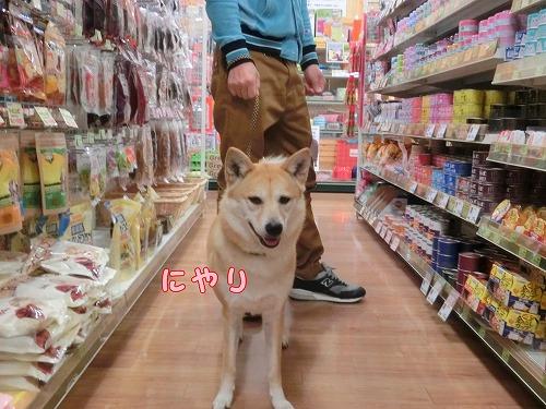 s-okaimono150511-CIMG8095