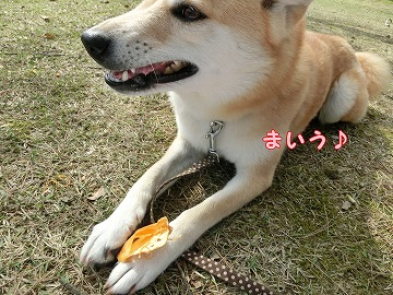 s-okaimono150511-CIMG8100