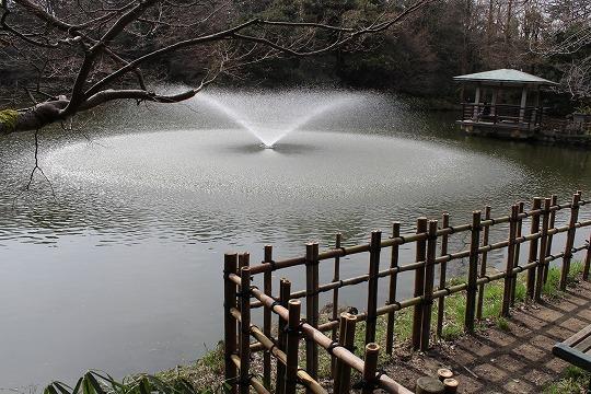 s-kozyouIMG_6193.jpg