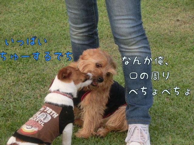 CIMG2178_20150522174049a97.jpg