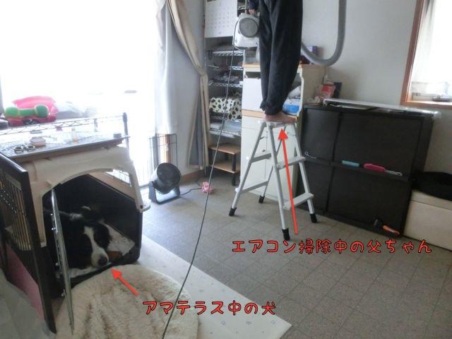 CIMG2891.jpg