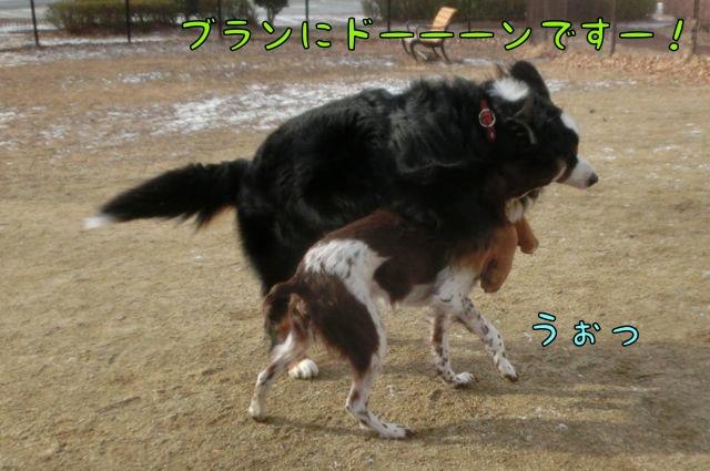 CIMG3879.jpg
