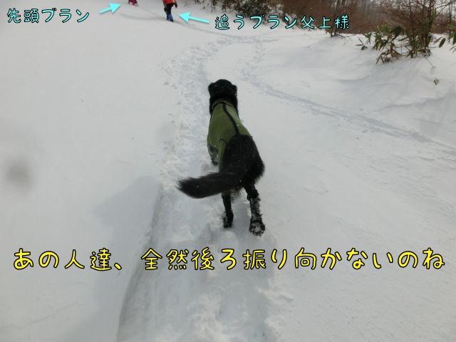 CIMG4821.jpg