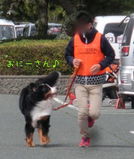 CIMG9169.jpg