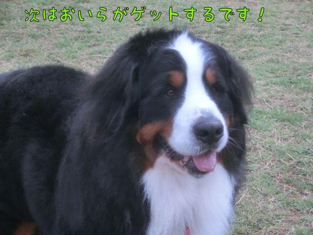 CIMG9389.jpg