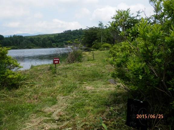 バラギ湖周辺の草刈り