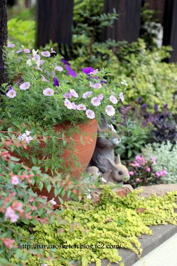 オープン花壇6月4