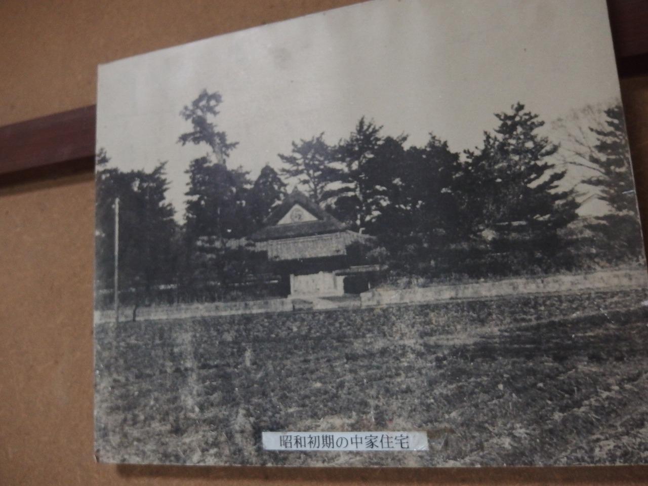s-P5091360.jpg