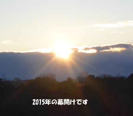 20150101_3.jpg