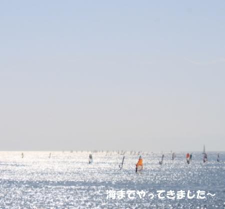 20150328_19.jpg