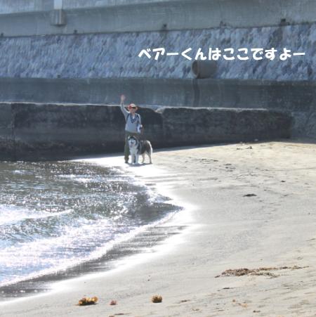 20150328_20.jpg