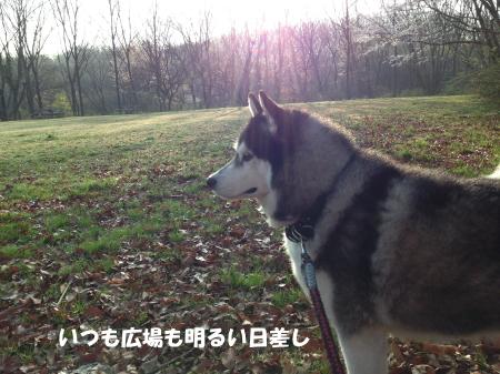 20150401_3.jpg