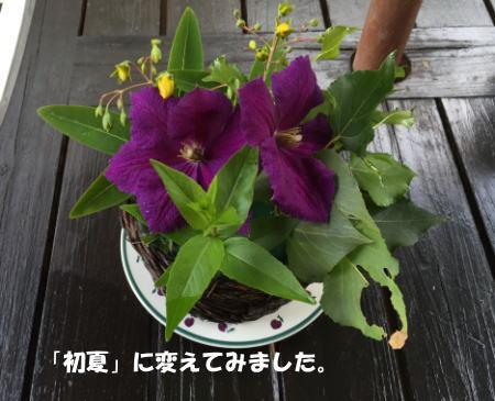 20150526_5.jpg