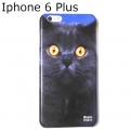 British Cat phone case iphone 6 plus (2)1