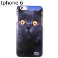 British Cat phone case iphone 6 (3)1