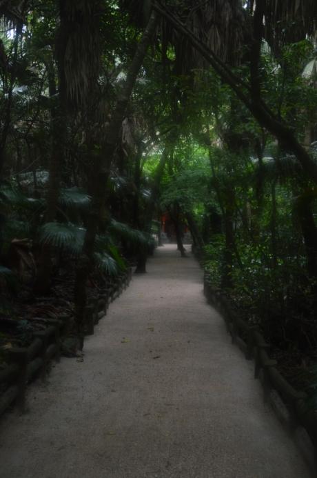 5青島神社元宮