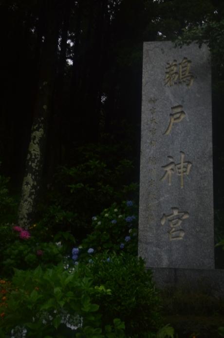 17鵜戸神宮本参道