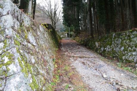 10曲輪を突っ切る登城道