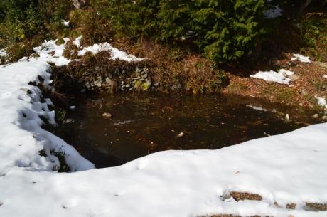 9馬洗い池