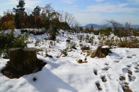 10雪まみれの馬屋敷跡